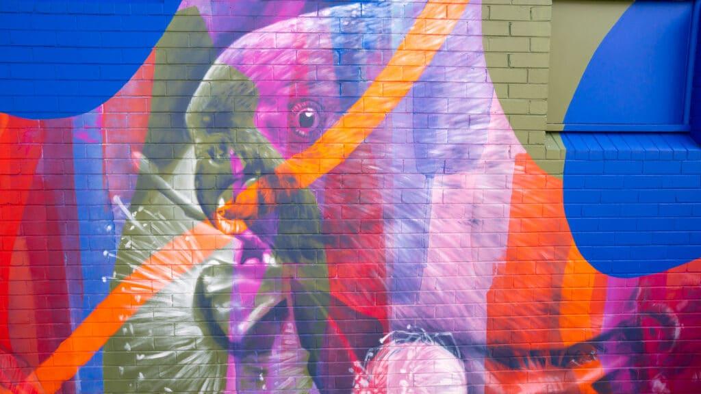 Street Mural Moruya