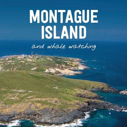 Montague Island brochure cover