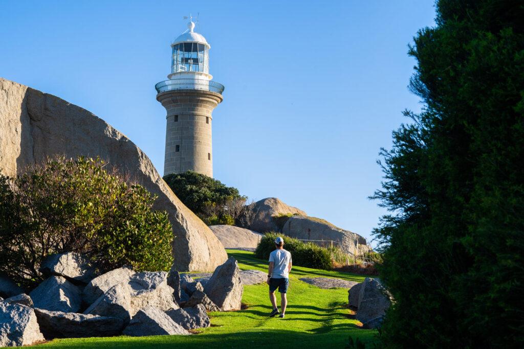 Montague Island tours